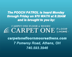 Brought to you by Carpet One Floor & Moore on 970 WATH